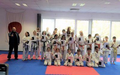 Erfolge bei Gürtelprüfungen beim Karate